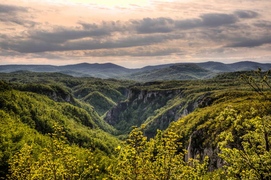The majestic Lazar\'s canyon
