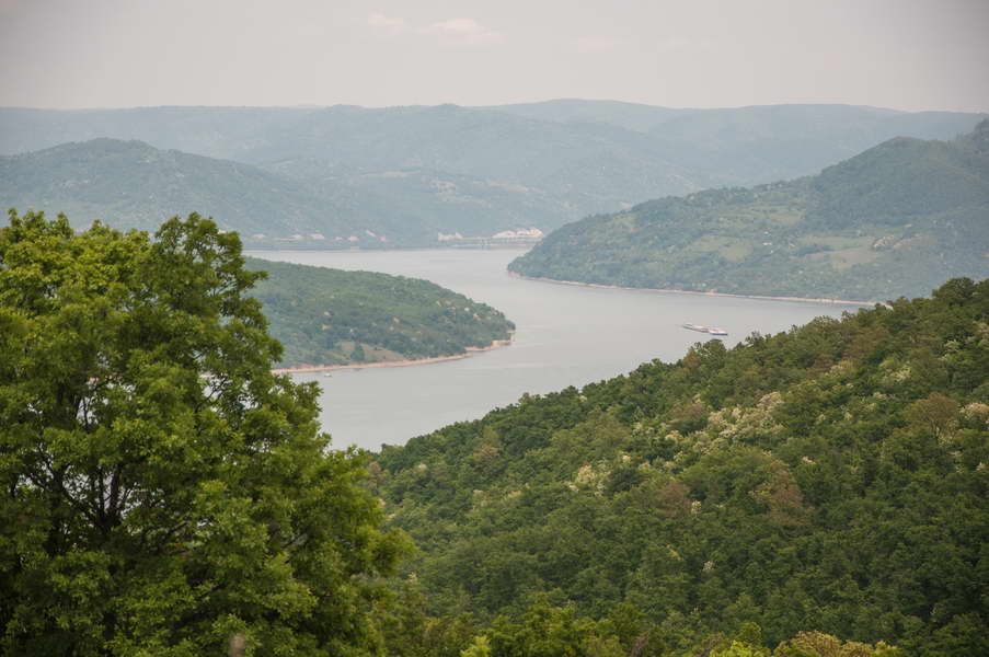 A closer look at the Danube from Miroč forests