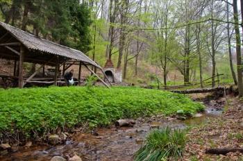 Коприве поред Пајкиног извора - у шуми хране увек има :-)
