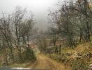 Selo Preslap