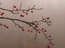 Šipak biljka čudnovata... nađete ga i po zimi