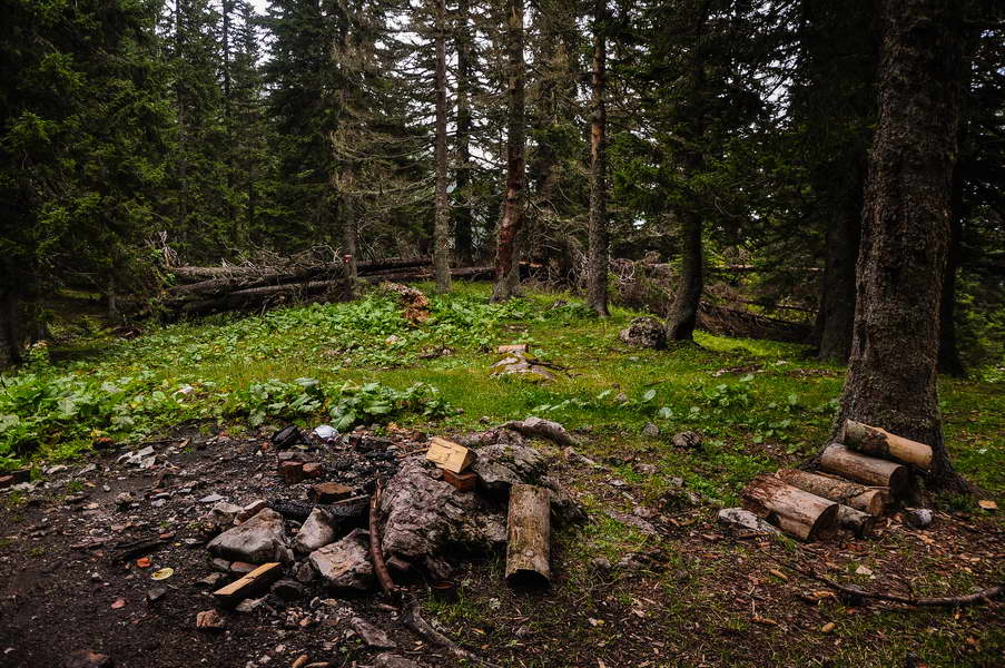 Spremljenih drva u izobilju