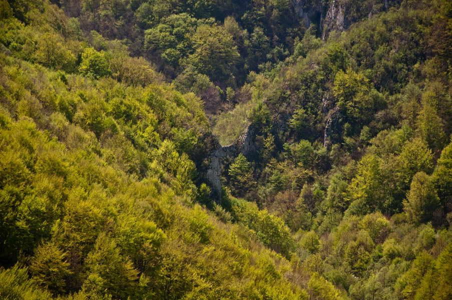 Početak kanjona Jagnila - da li bi tu možda mogla biti prerast?