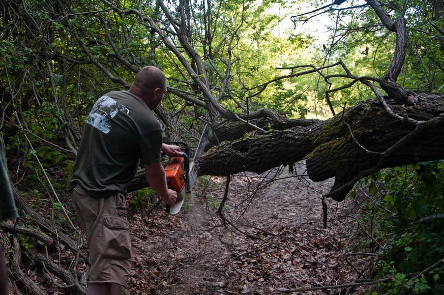 Kad drvo padne na put, postoji samo jedno rešenje - motorka