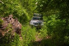 Probijanje kroz prašumu Polome