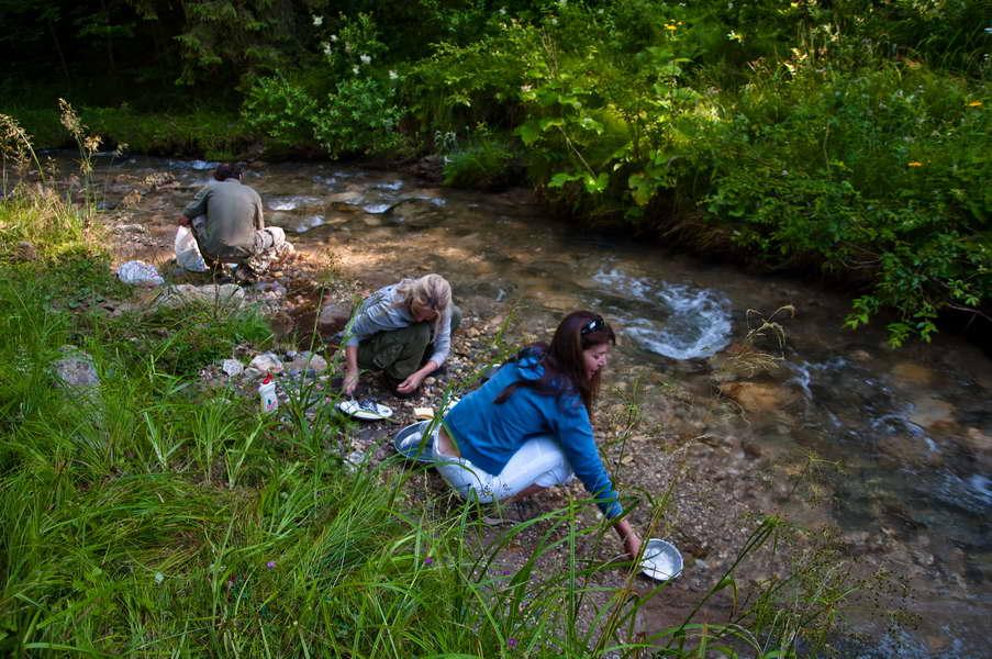 Jutarnje pospremanje na potoku