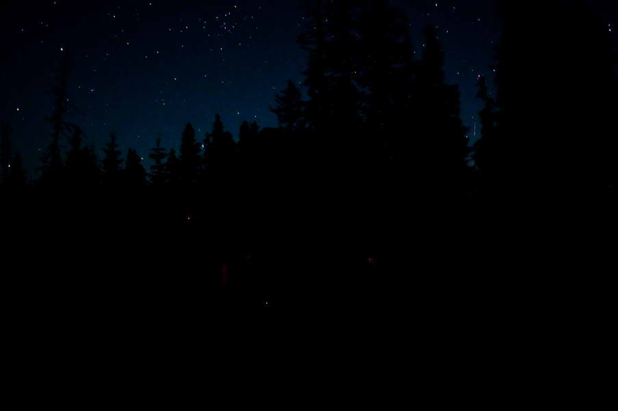 Samo obrisi četinara i zvezde...