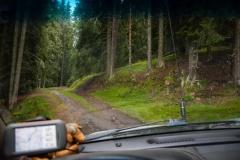 Kroz bajkovite šume Karpata