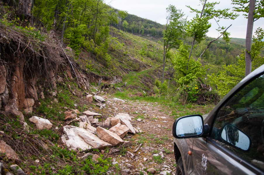 The end of the cleared part of the road on Svrljiške mountains