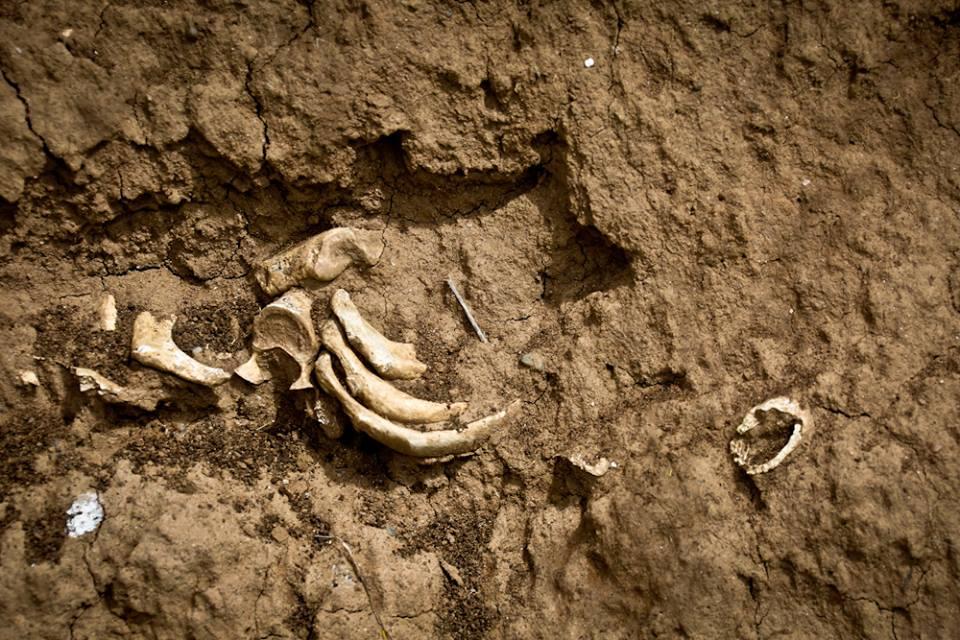Ostaci drevnog groblja na obalama Visočice