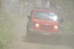 Jeep (176)