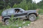 Jeep (181)