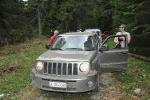 Jeep (232)