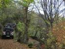 Lep šumski put pred Zlakusom